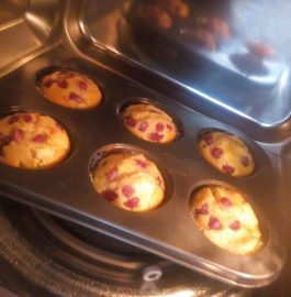 Fruit Muffins Recipe