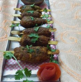 Soya Kabab : Nutritious and Tasty Snacks