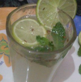 Mint and Soda Water - Classic Syrup!
