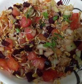 Methidana Sprout Kairi Salad