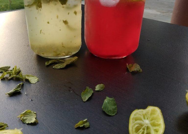 Mint And Rose Flavored Neebu Pani Recipe